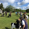 Thumbnail: Agricultural Day