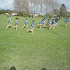 Inquirers Rippa Rugby team