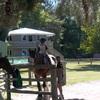 Inquirers El Rancho Camp