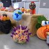 Harvest Festival 071