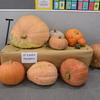 Harvest Festival 087