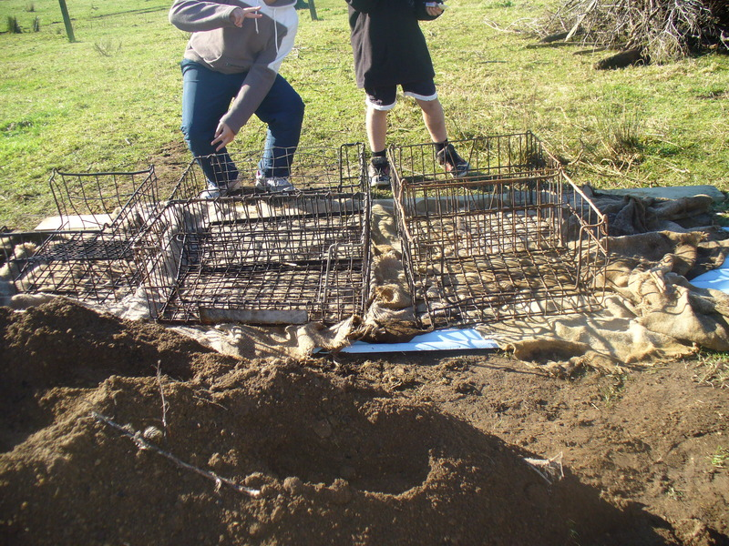 Preparing the hangi hole