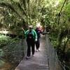 Thumbnail: Waitomo Camp 2015
