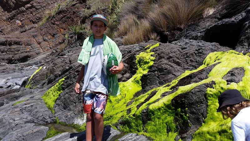 Kiritehere rock pools slime