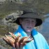 Edison finds a BIG starfish at Kiritehere