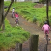 Thumbnail: Port Waikato