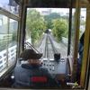 Thumbnail: Exploring our Capital City: Wellington Camp