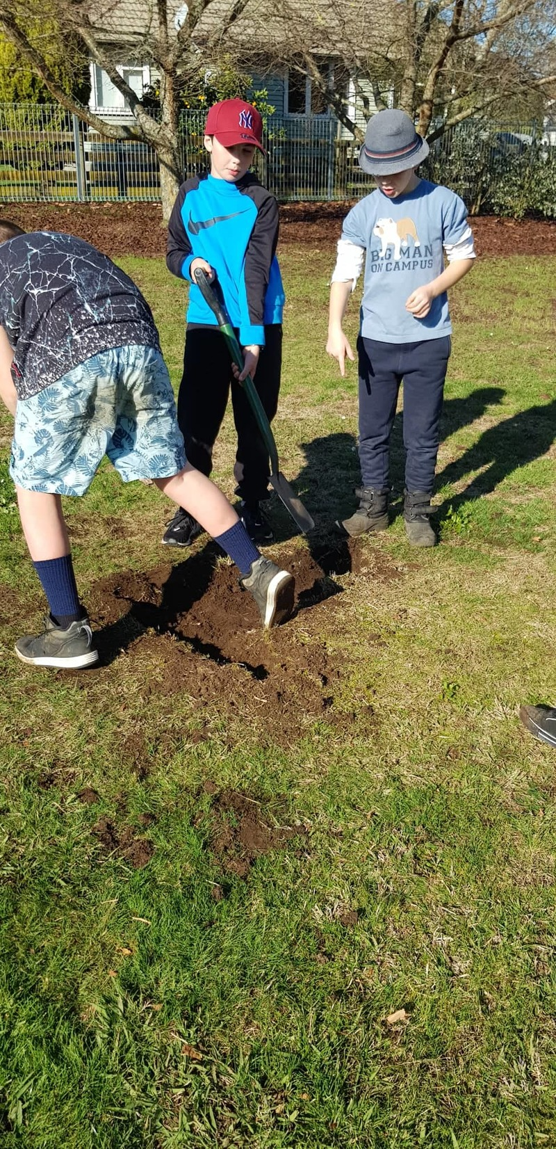 Hangi Hole Digging 7