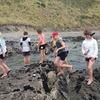 Thumbnail: Port Waikato Camp