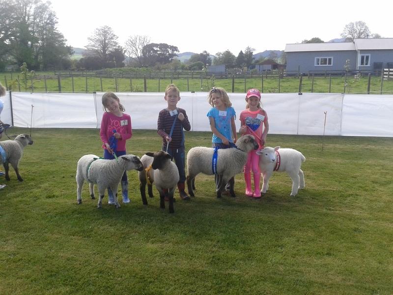 Lamb Group