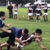 Thumbnail: League Boys Win Counties Manukau Zone
