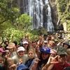 Thumbnail: Waitomo 2013