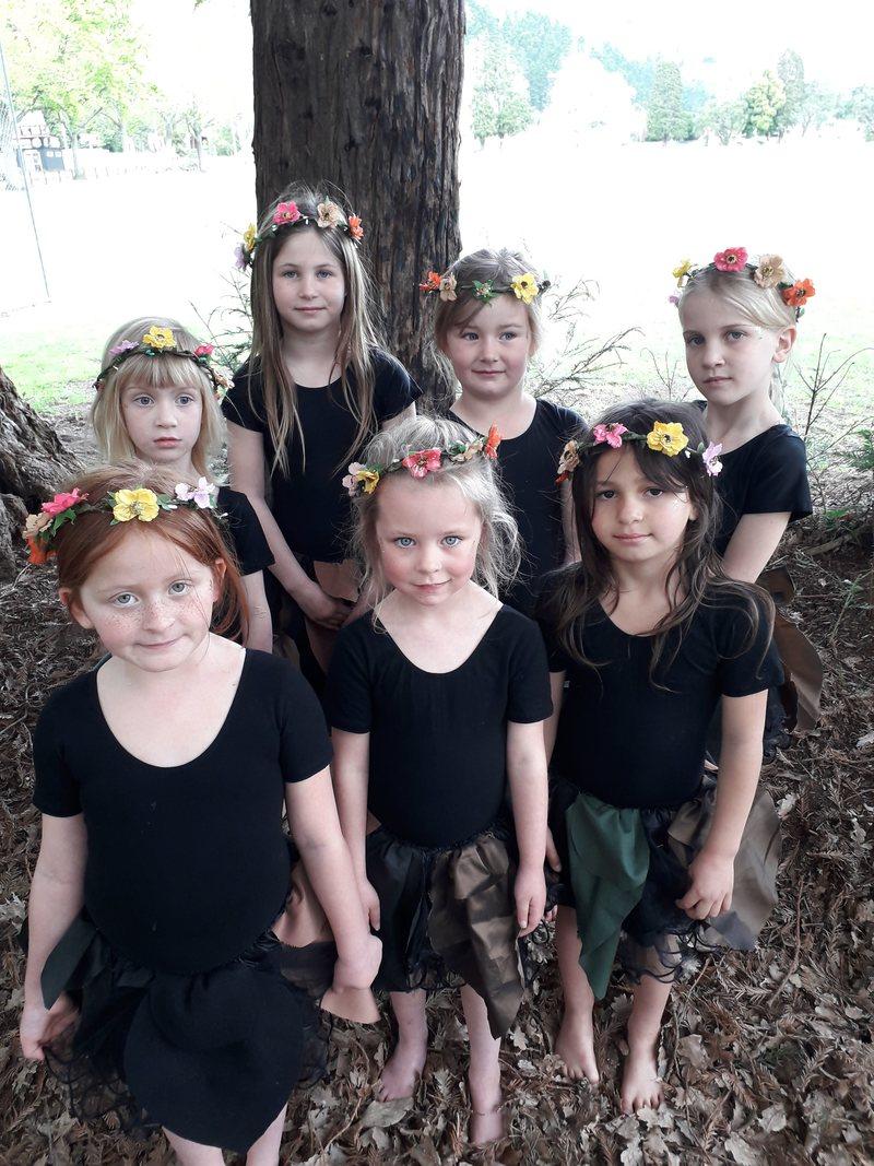 Woodland Fairies 1