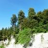 Thumbnail: waterfall
