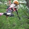 Thumbnail: flying kiwi