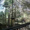 An impressive enclosure