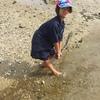 Thumbnail: Nga Hau e Wha Tahi Beach Trip