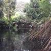 Thumbnail: 2016 OLT8 - Rotorua