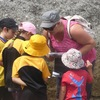 Thumbnail: School visit to Castlepoint Beach