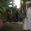 Easter Pageant 002