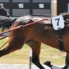 Thumbnail: Waikato Schools Challenge