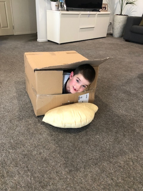 Theo playing in a box!