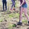 Tree Planting May 19 C