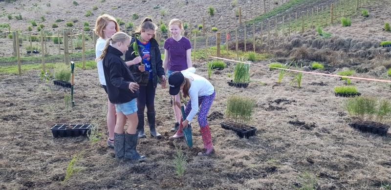 Tree Planting May 19 B