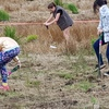Tree Planting May 19 G