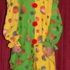 Clown Size 8-12yrs